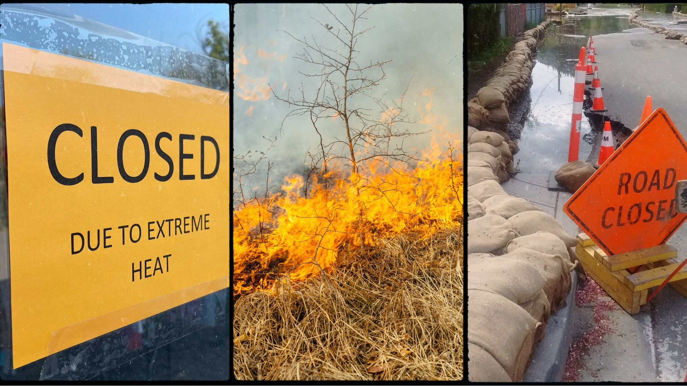 Collage graphic with images of heatwave, wildfire and flooded road with sandbags
