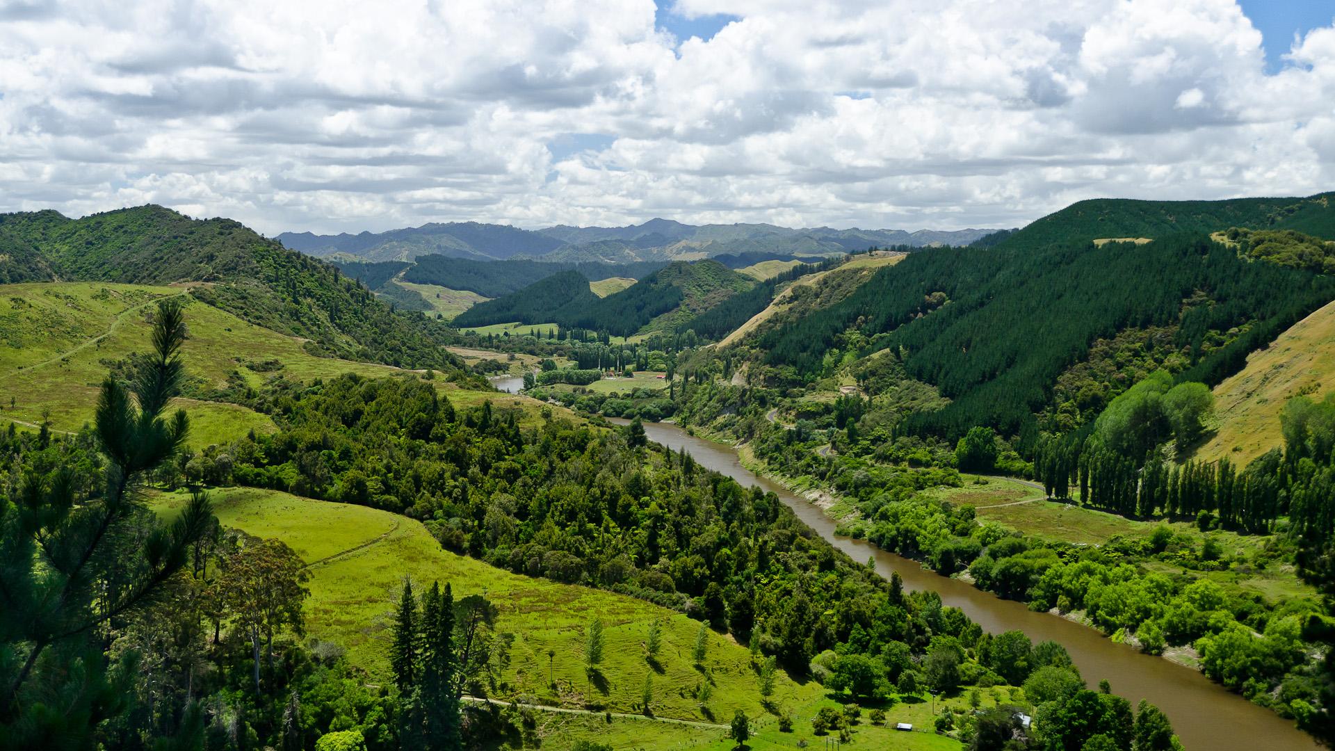 Whanganui River View