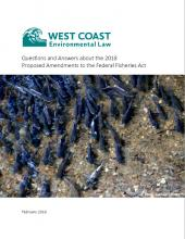 Q&A about 2018 Proposed Federal Fisheries Act Amendments