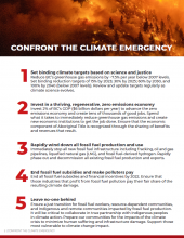 Confront the Climate Emergency - Open Letter