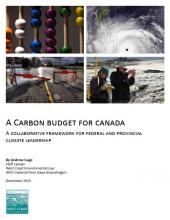 Carbon Budget report