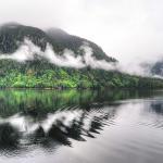 Photo credit: Kathryn Burrington Great Bear Rainforest, British Columbia, Canada