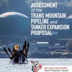 TWN Assessment